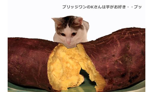 焼き芋2+ろく